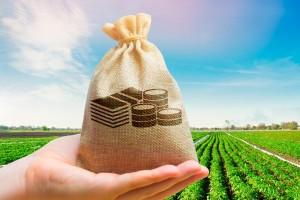 BNDES disponibiliza R$ 5,1 bilhões ao pequeno produtor rural