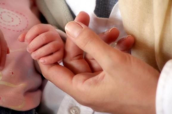 Projeto compartilha na web informações sobre os 365 primeiros dias do bebê